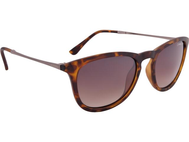 Alpina Zaryn Cykelbriller grå/brun (2019) | Briller